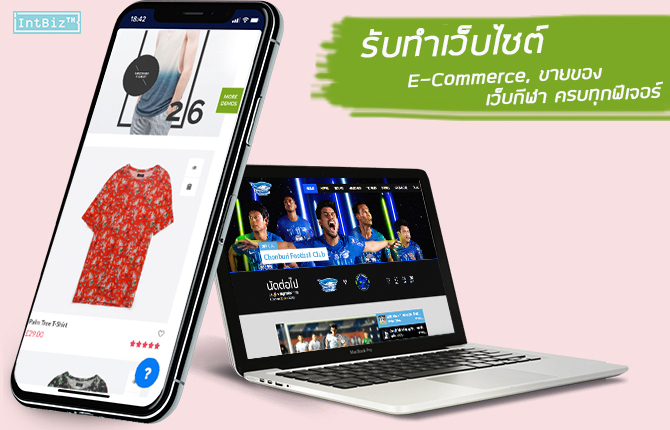 เว็บ Wordpress ecommerce